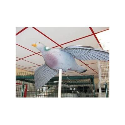 Forme de pigeon à ailes battantes