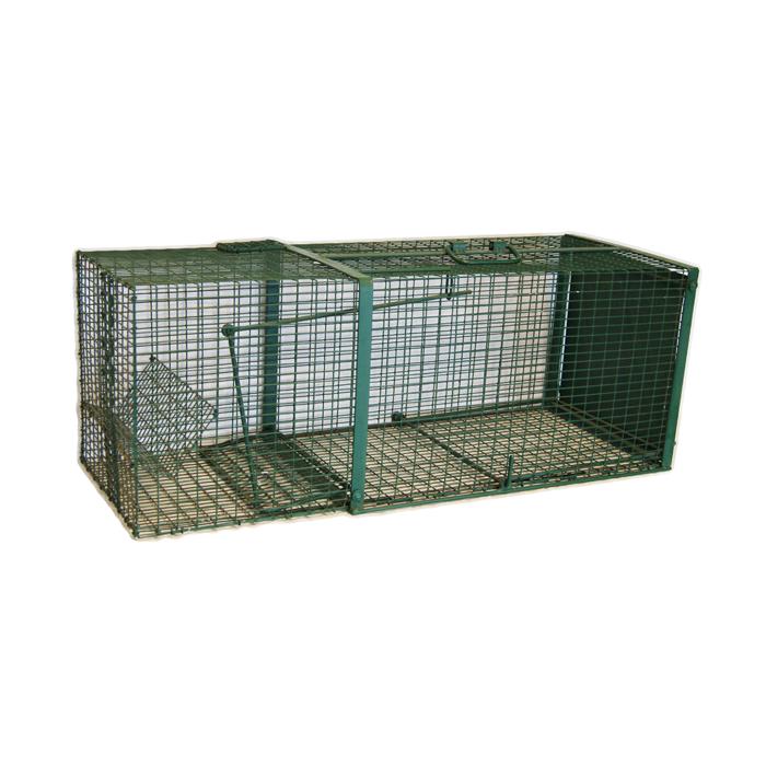 Boîte à rats musqués