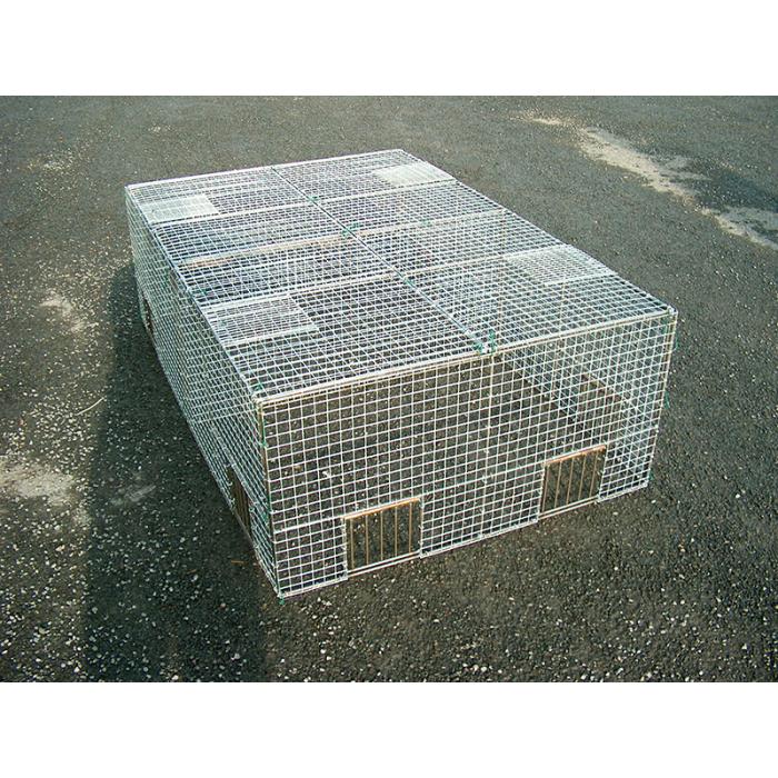 Cage à pigeon à cliquettes en kit 150x100x50
