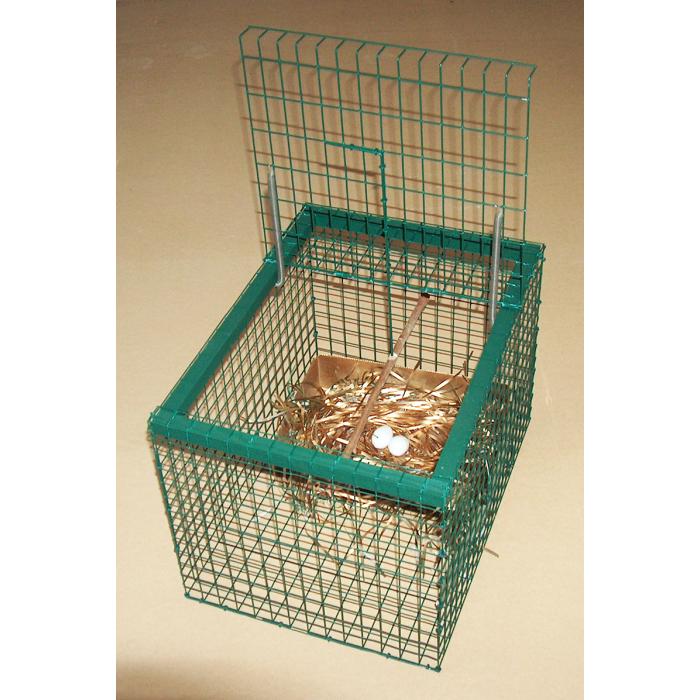 Cage à Geais avec cadre en bois