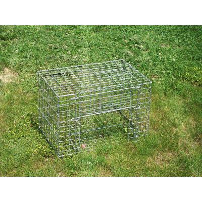 Cage attrape geais