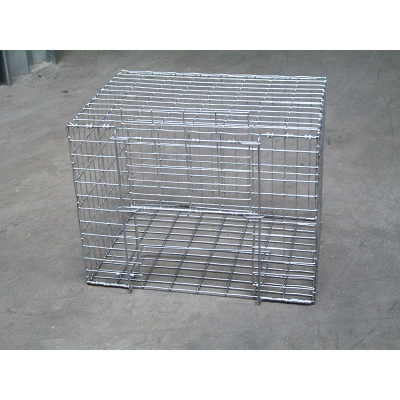 Cage attrape pigeon 40x30x30