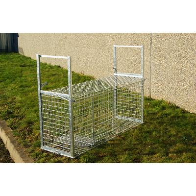 Cage à renard ou à chien