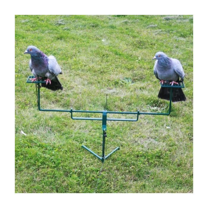 Palette à pigeon double à poser