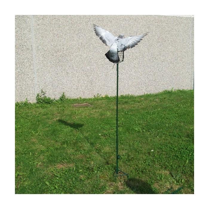 Palette à pigeon haute