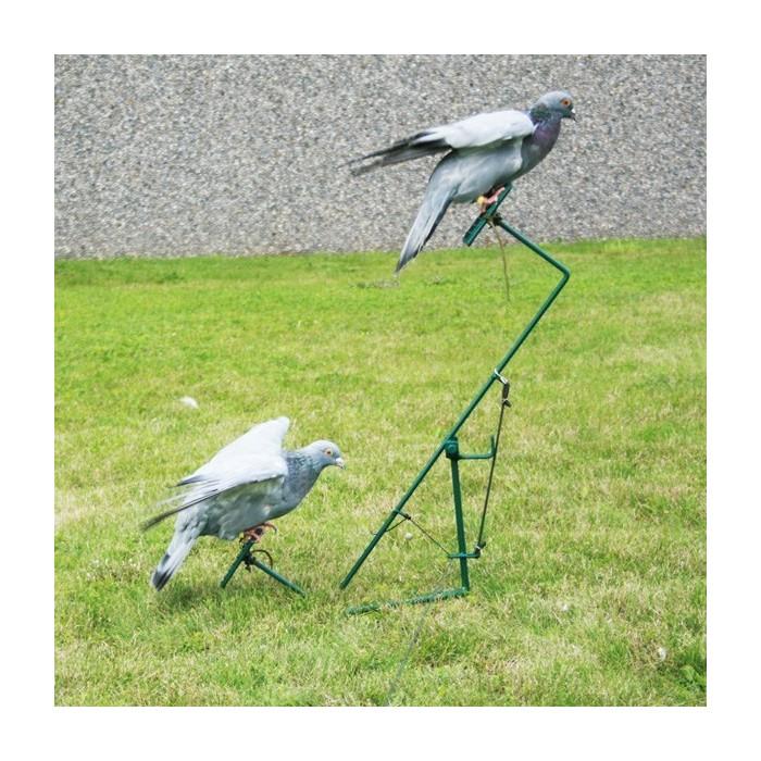 Palette à pigeons double décalée