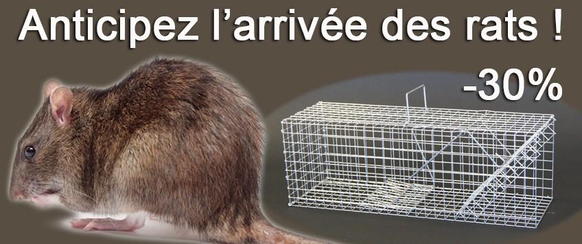 Promo folle sur les nasses à rats